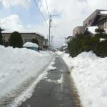 やっと除雪が入りました